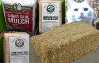 Pea Straw, Lucerne & Sugar Cane Mulch